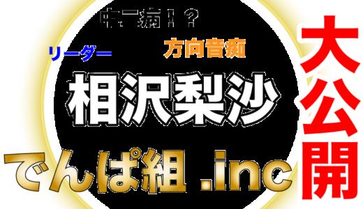 でんぱ組.incの相沢梨沙はグループのリーダーで歌姫!秋葉原を体現した存在!