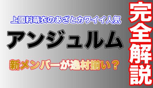 新メンバーも加わり人気加速の「アンジュルム」上國料萌衣のあざとカワイイ人気も急上昇!