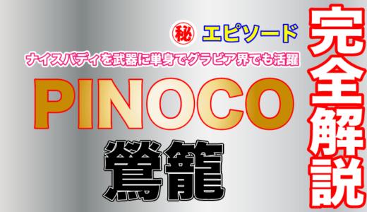 鶯籠のPINOCOは黒髪ショートの清純派と思いきや胸の主張が激しい!高校を衝動的に辞めていた!